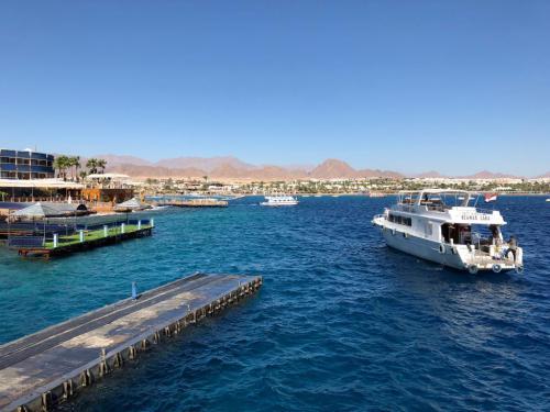 Mar Rosso 2018 - Sharm El Sheik